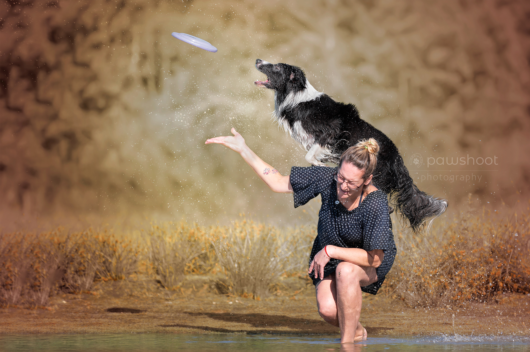 springende hond frisbee Pawshoot hondenfotografie