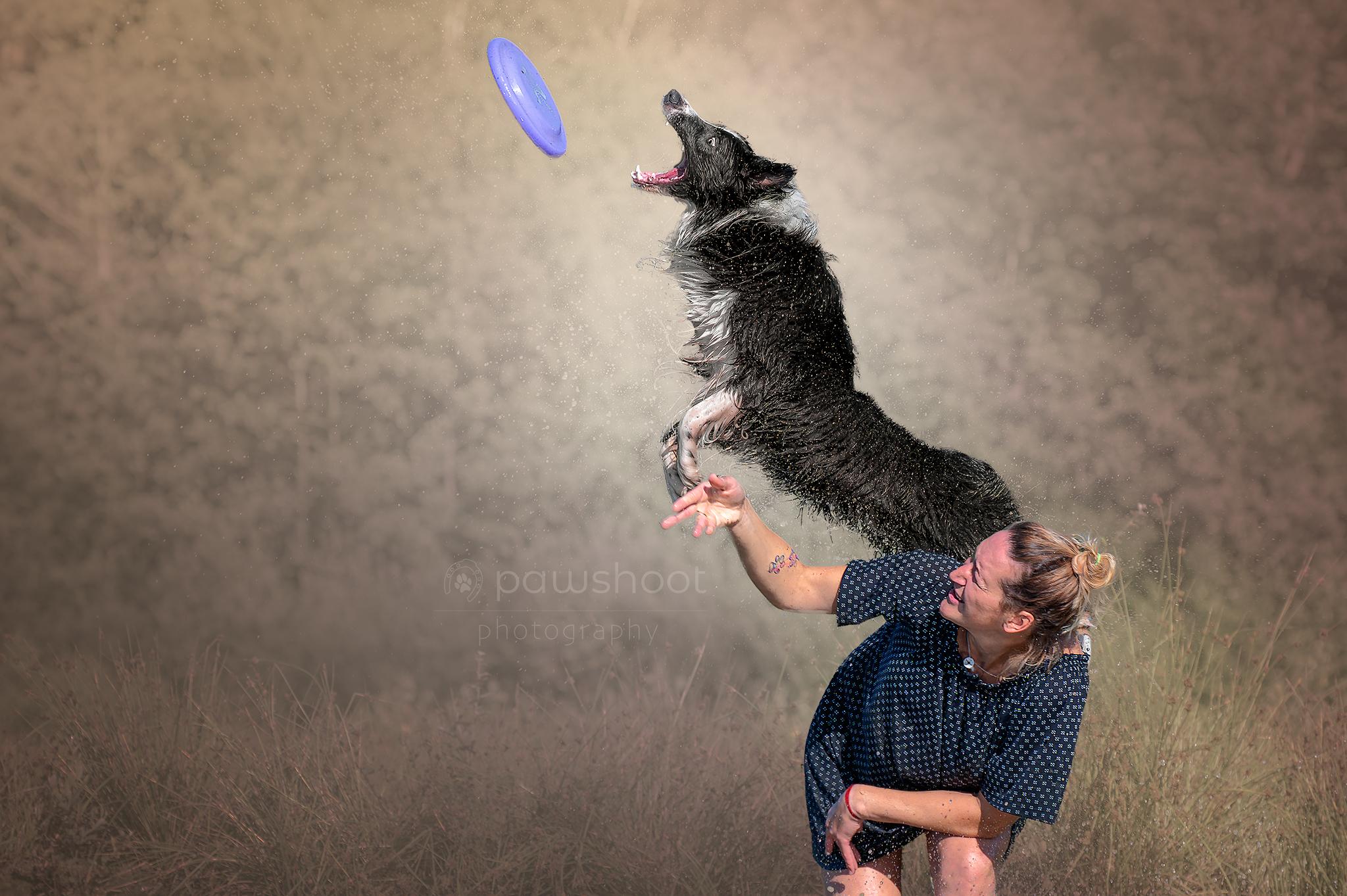 vliegende hond Pawshoot hondenfotografie