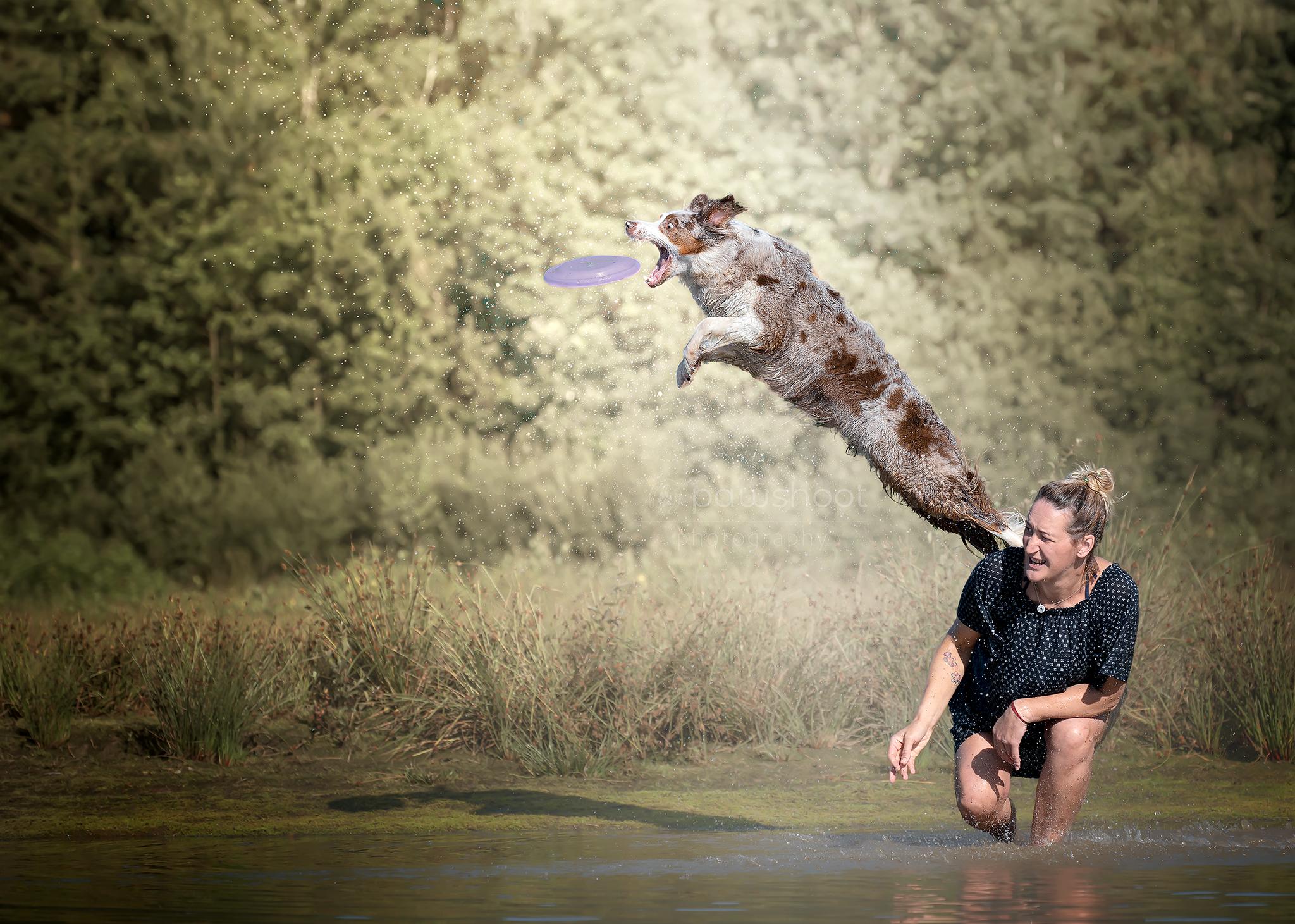 hond met frisbee en mens Pawshoot hondenfotografie